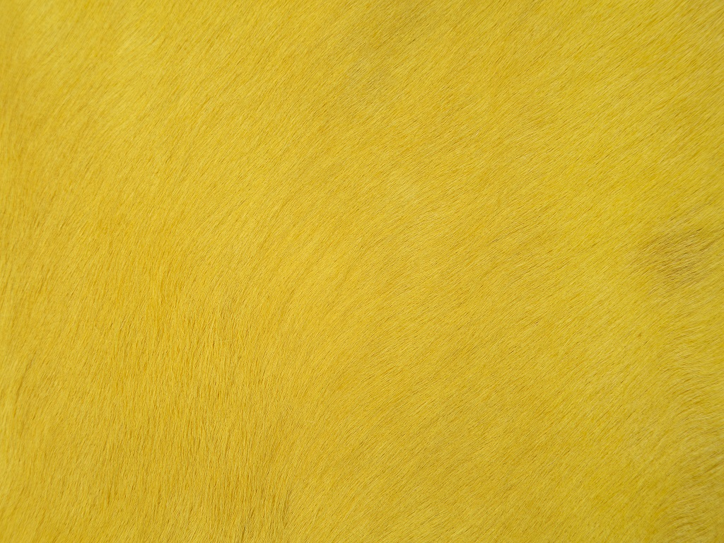 Cow Dyed Yellow Part