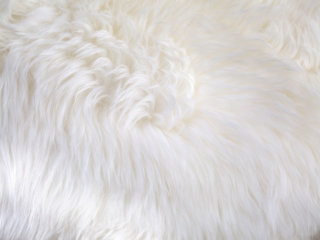 Sheepskin White Part