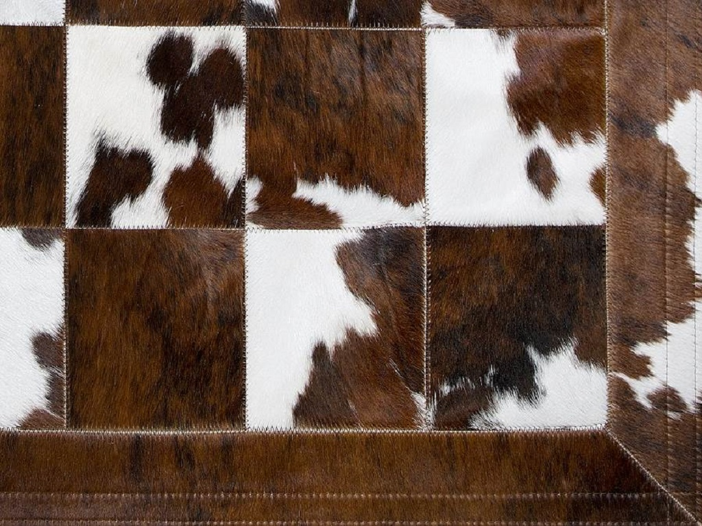 Carpet Cow Multi Border Part
