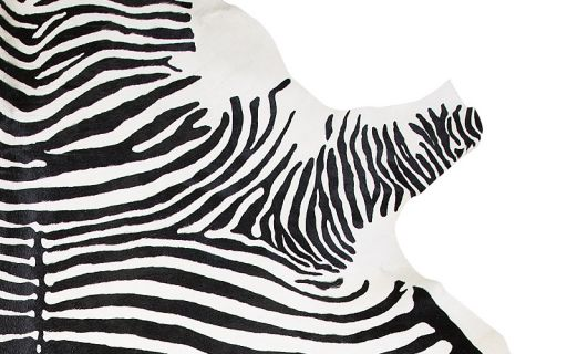 Cow Printed Zebra 2